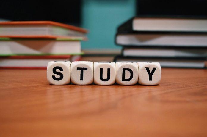 studia ekonomiczne